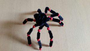 pfeifenputzer-spinnen-12