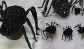 DIY- Glitzer-Spinnen